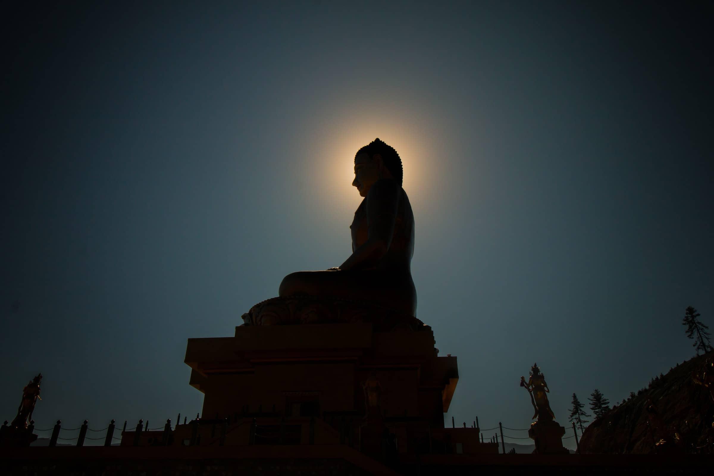 The Vipassana Test